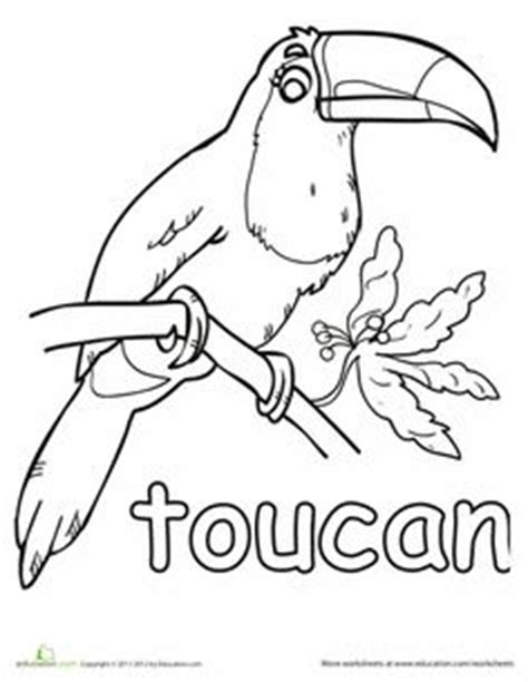 coloring page toucan flying toucan coloring page free flying toucan