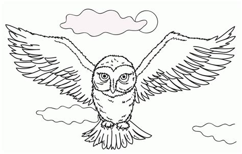 harry potter owl coloring pages hedwig harry potter owl coloring pages print 525121