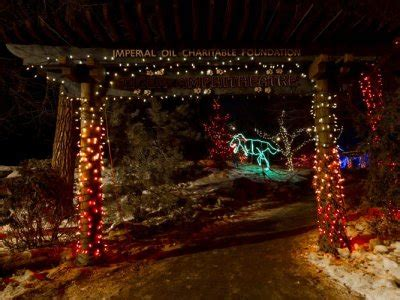 The Calgary Zoolights Outdoor Escapade Canadian Trip Calgary Zoo Lights Coupons