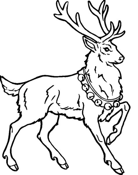 Free Reindeer Coloring Pages free printable reindeer coloring pages for