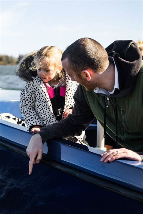 boating without a license go boating without a licence outincanberra