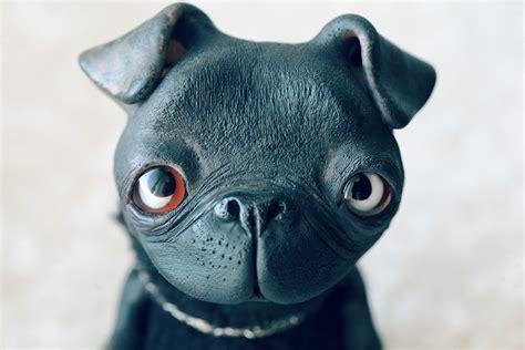 buy black pug black pug by da bu di bu da on deviantart