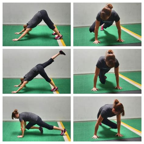 dogs with abs how to do a push up redefining strength