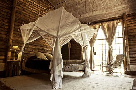 safari inspired bedroom baldaqino decoist