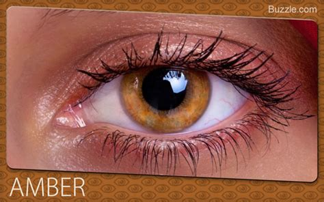 what is the rarest eye color fascinating facts about eye colors
