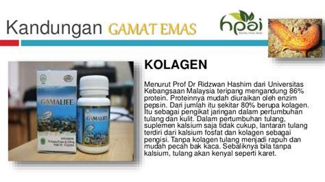 Herbal Kapsul Gamat Hpai hpai kolagen pusat produk hpai