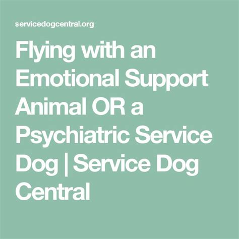 Emotional Support Animal Letter For Flying Exle 25 Best Ideas About Emotional Support Animal On Service Service Dogs