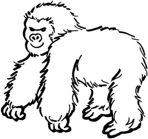 free animal zoo quot gorilla quot coloring pages to print