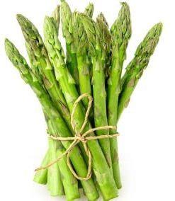 Harga Bibit Tanaman Asparagus jual benih bibit tanaman sayuran murah lengkap bibit