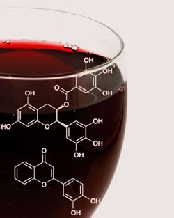 wine science better through chemistry 171 the wine shiells development editor chemical science