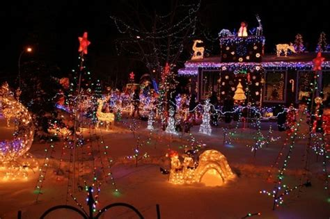 how much does zoo lights cost in cost to install lights estimates and prices at
