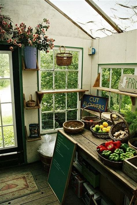 shed interiors great garden shed interior greenhouses and outdoor