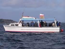 boat cruise queenscliff impulse charters queenscliff victoria