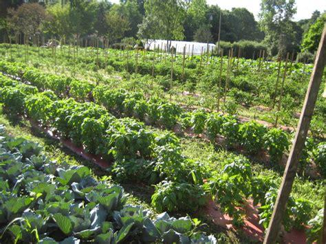 shortts farm and garden center localharvest