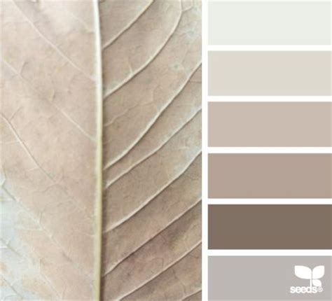 wandfarbe taupe how to use taupe color in your home decor homesthetics