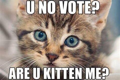 voting memes 20 sarcastic and voting memes that can totally make