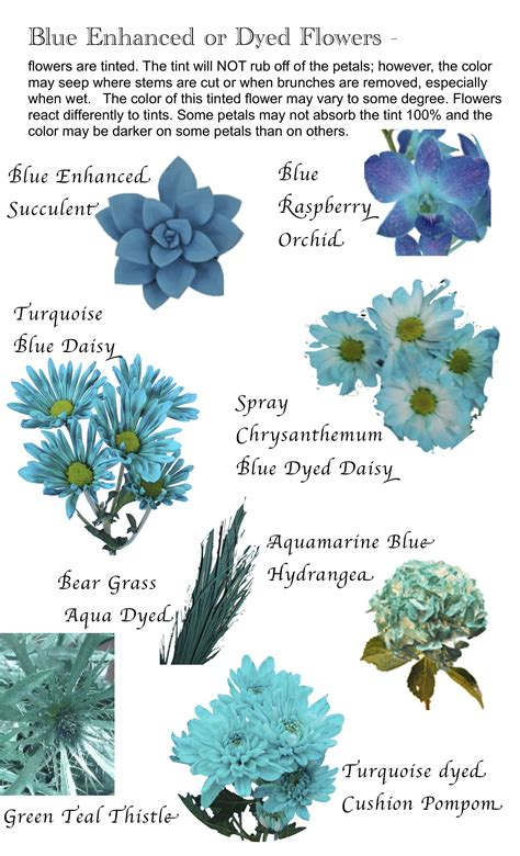 7 Types Of Flowers To For A Winter Wedding by Flower Names By Color Flowers Flower And Gardens