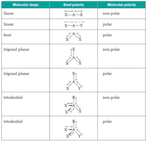 Polarity Table by How To Predit Polarity Of Molecules Biochemhelp