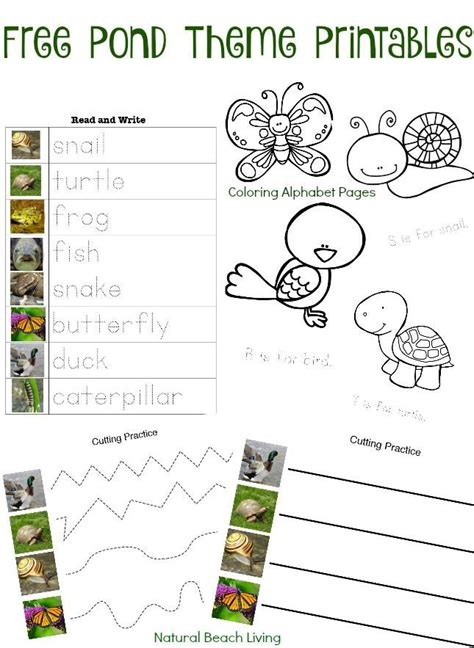 printable science games 1000 images about unit farms on pinterest farm animals