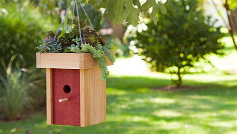 Birdhouse Planters by Easy Birdhouse With Succulent Planter
