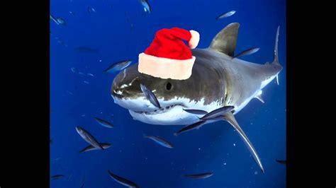 newest kid fish for christmas shark great white shark