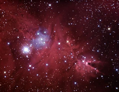 christmas tree nebula pics about space