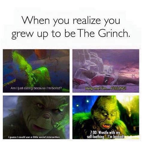 Funny Grinch Memes - the 25 best ideas about the grinch meme on pinterest