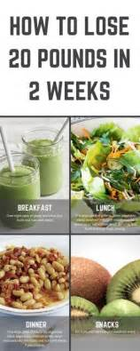 Lose 20 Pounds In 2 Weeks Detox Diet by Best 25 Slim Drink Ideas That You Will Like On