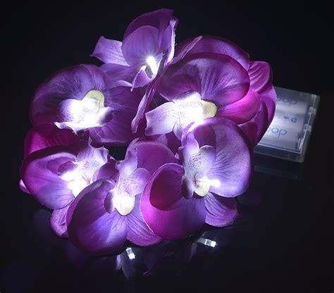 Blowout Purple Orchid String Light Orchid String Lights