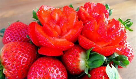fruit garnish fruit garnish www imgkid the image kid has it
