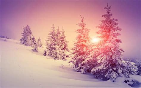 paesaggio invernale sfondi desktop wallpapers e pelautscom pictures scarica sfondi inverno neve alberi tramonto paesaggio
