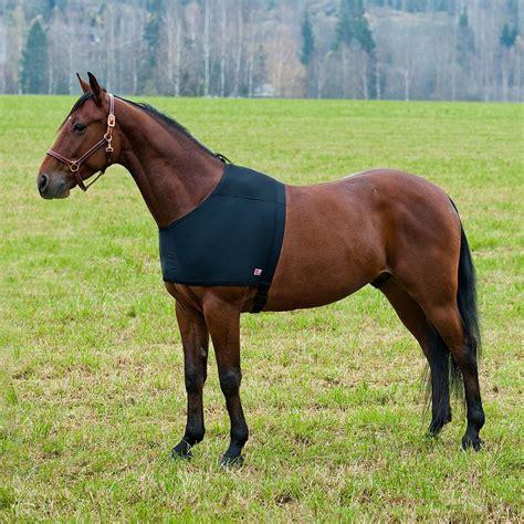 Schulterschutz F 252 R Regendecke Decke F 252 R Pferde Schwarz