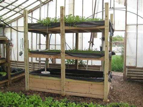 backyard aquaponics system diy everything you need to know to build a simple