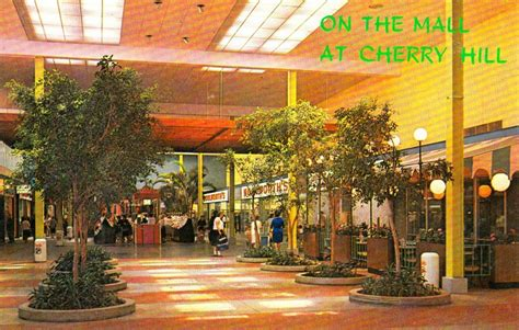 stores stylish mid century shopping malls ultra swank