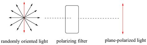 what is polarized light image116 png