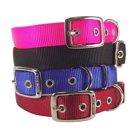 hamilton collar hamilton collar review hamiltonfashion pet products