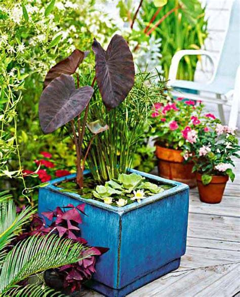 21 Fascinating Low Budget Diy Mini Ponds In A Pot Cret 237 Que Mini Water Garden Ideas
