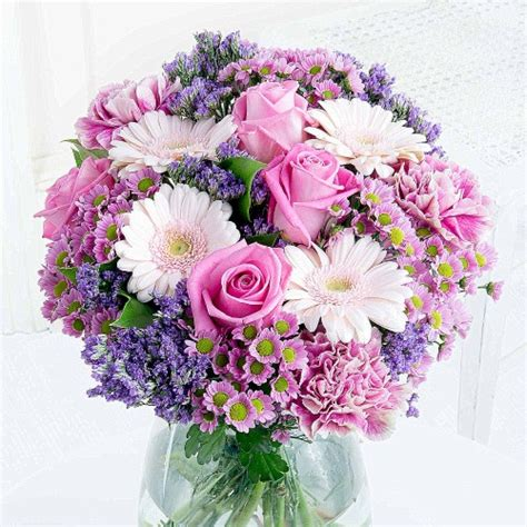 buy roses online roses delivered with free delivery