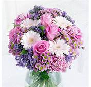 Buy Roses Online  Delivered With FREE Delivery