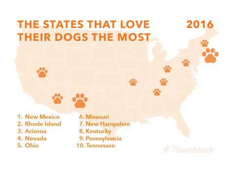 State With The Most Dog Owners | celebrate national dog day