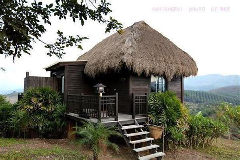 impressive thatch roof designs ideas for you 322