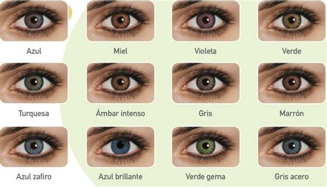 fresh look color blend contacts freshlook color blend lentillas contact lenses