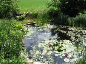 How Much Is It To Landscape A Backyard 17 Beautiful Backyard Pond Ideas For All Budgets