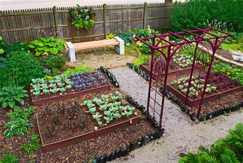House Vegetable Garden Small Vegetable Garden Layout Garden Landscap Small
