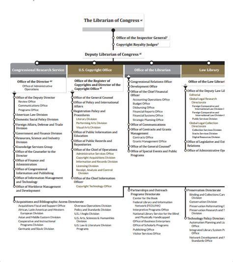 blank organizational chart 9 blank organizational charts sle templates