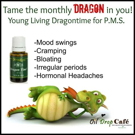 migraines and mood swings 1000 images about dragon on pinterest dragon time