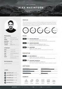 best 25 best resume template ideas on pinterest