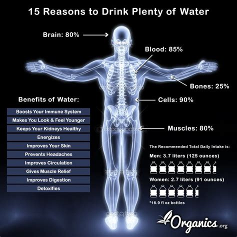 wont eat but drinks water 15 reasons why you need to drink more water