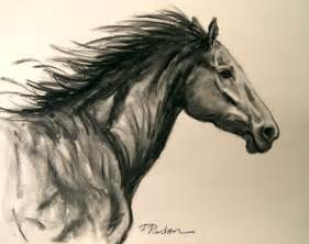 abstract horses charcoal sketch of a wild horse by