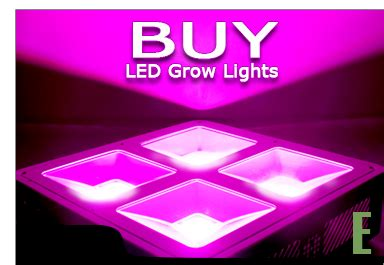 Buy Led Lights by Cannabis Growers Worldwide What Are The Best Types Of